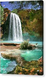 Paradise Acrylic Print by PMG Images