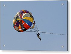 Paraglider Blue Acrylic Print by Kantilal Patel