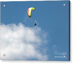 Paraglider Acrylic Print by Cindy Singleton