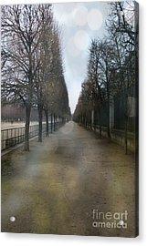 Paris Nature - The Tuileries Row Of Trees  Acrylic Print