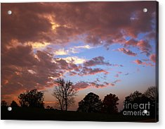 Park At Sunset Acrylic Print by Susan Isakson