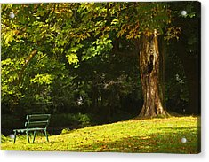 Park Bench Beside The Owenriff River In Acrylic Print by Trish Punch