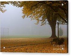 Park In Autumn Acrylic Print by David Buffington