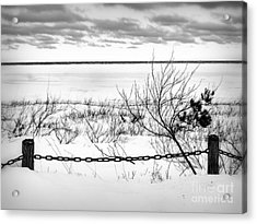 Park In Winter Acrylic Print