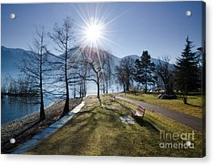 Park On The Lakefront Acrylic Print