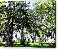 Park Trees Acrylic Print by Lisa  Ridgeway