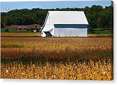 Parke County Countryside Acrylic Print