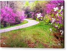 Parkway Kind Of Spring Acrylic Print by Darren Fisher