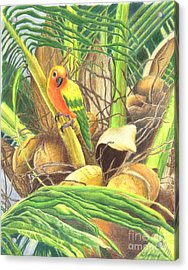 Parrot In Palm Acrylic Print
