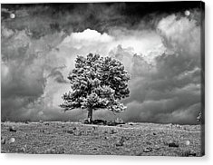 Passing Storm Acrylic Print by G Wigler