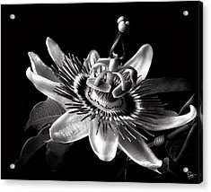 Passion Flower In Black And White Acrylic Print