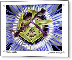 Acrylic Print featuring the photograph Passion's Fly by Jennie Breeze