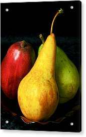 Acrylic Print featuring the photograph Passions I by Elf Evans