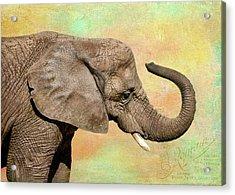 Pastel Elephant Acrylic Print