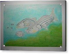 Pastel Fish Acrylic Print by Maya M