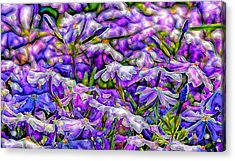 Pastelated Florets Acrylic Print by Bill Tiepelman