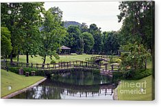 Acrylic Print featuring the photograph Pastoral Thailand by Craig Wood
