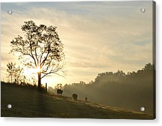 Acrylic Print featuring the photograph Pasture Sunrise by JD Grimes