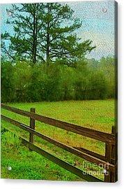 Pastureland Acrylic Print by Judi Bagwell
