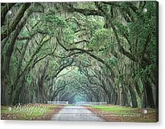 Path Of Life 2 Acrylic Print by Mary Hershberger