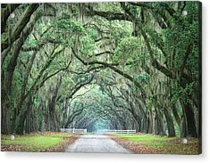 Acrylic Print featuring the photograph Path Of Life 4 by Mary Hershberger