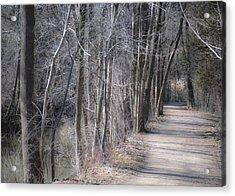 Path-ology Acrylic Print