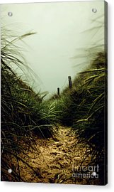 Path Through The Dunes Acrylic Print by Hannes Cmarits
