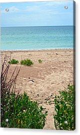 Pathway To The Beach Acrylic Print by Sandi OReilly