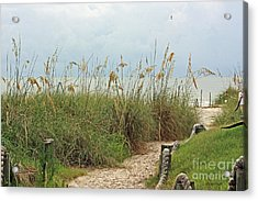 Pathway To The Gulf Acrylic Print