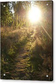 Pathway To The Light Of Heaven Acrylic Print by Lee Yang