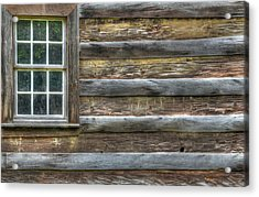 Patriot Acrylic Print by Mary Anne Baker