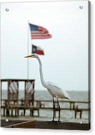 Patriotic Acrylic Print
