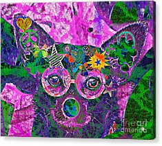 Peace And Love Chihuahua Acrylic Print by Kevin Moore