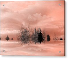 Acrylic Print featuring the photograph Peace by Elfriede Fulda