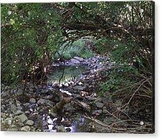 Peaceful Creek 2 Acrylic Print by Katherine Woods