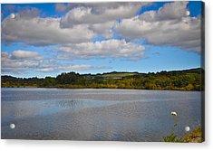 Peaceful Lake Acrylic Print by Erica McLellan