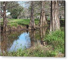 Peaceful Pond Acrylic Print by Tammy Herrin