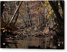 Peaceful Stream Acrylic Print