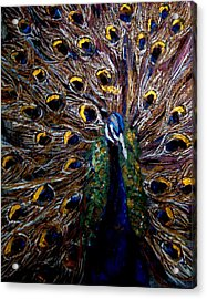 Acrylic Print featuring the painting Peacock 1 by Amanda Dinan