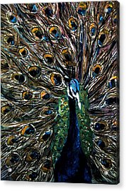 Acrylic Print featuring the painting Peacock 2 by Amanda Dinan