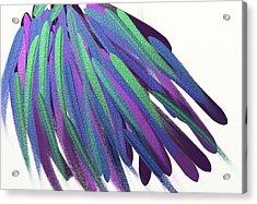 Peacock Wig Acrylic Print