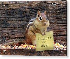 Peanuts Or Else Acrylic Print by Lori Deiter