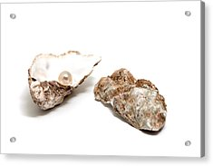 Pearl In Shell Acrylic Print by Ursula Alter
