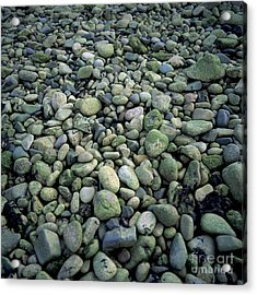 Pebbles Acrylic Print by Bernard Jaubert
