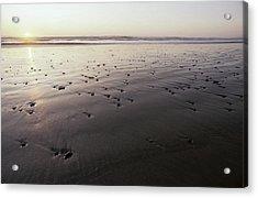 Pebbles Form Patterns On A Sandy Ocean Acrylic Print by Jason Edwards