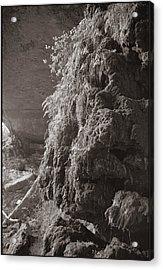 Pedernales Falls Tx Acrylic Print