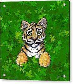 Peeking Tiger Acrylic Print by Kim Niles
