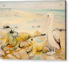 Pelican Muse Acrylic Print