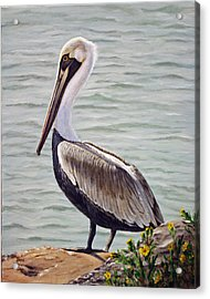 Acrylic Print featuring the painting Pelican On The Waterway by Jimmie Bartlett