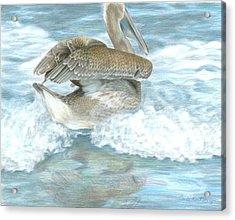 Pelican Surf Acrylic Print